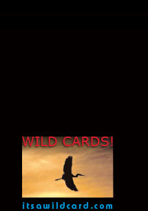 It' a Wild Card note cards